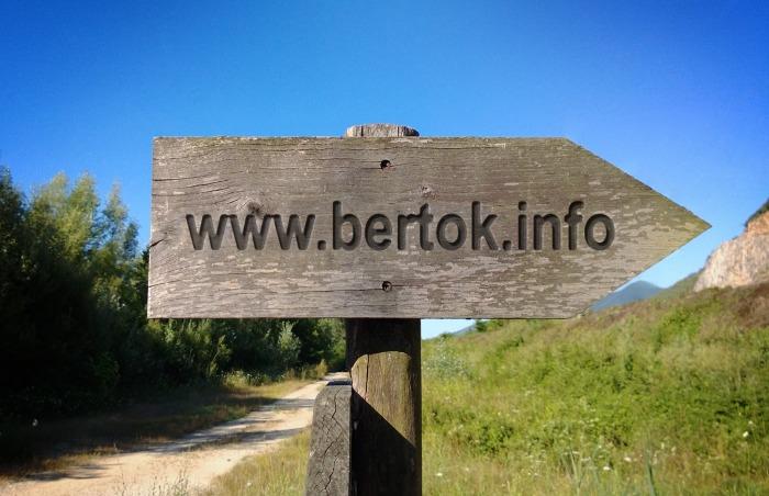 wwwbertokinfo.jpg