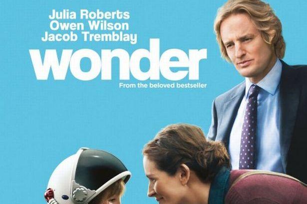 215_wonder.jpg