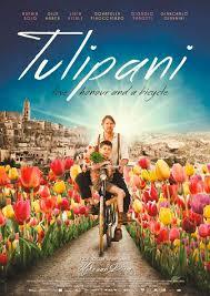 350_tulipani-amore-onore-e-una-bicicletta.jpg